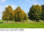 Купить «Осенний пейзаж», фото № 23471838, снято 22 октября 2015 г. (c) Татьяна Кахилл / Фотобанк Лори