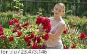 Купить «woman taking care of red rose», видеоролик № 23473146, снято 7 августа 2016 г. (c) Яков Филимонов / Фотобанк Лори