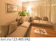 Купить «Modern interior of dining room», фото № 23485042, снято 19 июня 2015 г. (c) Elnur / Фотобанк Лори