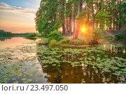 Купить «Beautiful sunset over forest lake», фото № 23497050, снято 21 марта 2018 г. (c) Sergey Borisov / Фотобанк Лори
