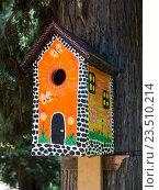 Яркий, разрисованный под дом, скворечник на стволе дерева. Стоковое фото, фотограф Вячеслав Палес / Фотобанк Лори