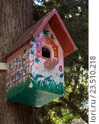 Расписной скворечник на стволе дерева. Стоковое фото, фотограф Вячеслав Палес / Фотобанк Лори