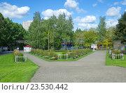 Измайловский Парк Культуры и отдыха, Москва (2016 год). Редакционное фото, фотограф Елена Коромыслова / Фотобанк Лори