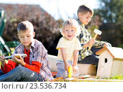 Купить «Happy kids brothers making wooden birdhouse by hands», фото № 23536734, снято 3 сентября 2016 г. (c) Оксана Кузьмина / Фотобанк Лори