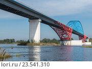 Купить «Путинский мост через Енисей», фото № 23541310, снято 28 августа 2016 г. (c) Вячеслав Зеленин / Фотобанк Лори