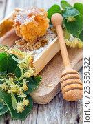 Купить «Липовые цветы, мед и деревянная ложка», фото № 23559322, снято 21 июня 2015 г. (c) Марина Сапрунова / Фотобанк Лори