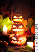 Купить «Тыквы на праздник Хэллоуин», фото № 23561978, снято 9 октября 2015 г. (c) Евдокимов Максим / Фотобанк Лори