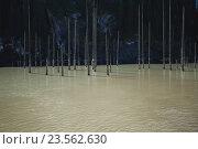 Озеро Койынды. Алматинская область. Стоковое фото, фотограф Олыкайнен Наталья / Фотобанк Лори