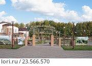 Купить «Природный парк Птичья гавань, Омск», фото № 23566570, снято 21 сентября 2016 г. (c) Галина Хорошман / Фотобанк Лори