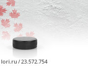 Купить «Канадская хоккейная шайба», фото № 23572754, снято 17 ноября 2013 г. (c) Дмитрий Грушин / Фотобанк Лори