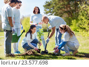 Купить «group of volunteers planting tree in park», фото № 23577698, снято 7 мая 2016 г. (c) Syda Productions / Фотобанк Лори