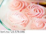 Купить «close up of sweet custard dessert on serving tray», фото № 23578046, снято 11 июня 2016 г. (c) Syda Productions / Фотобанк Лори