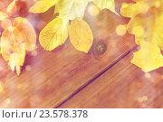 Купить «close up of many different fallen autumn leaves», фото № 23578378, снято 19 октября 2015 г. (c) Syda Productions / Фотобанк Лори
