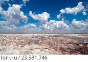 Купить «Соленое озеро Баскунчак», фото № 23581746, снято 9 июля 2016 г. (c) Игорь Р / Фотобанк Лори