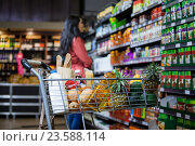 Купить «Various groceries in shopping cart», фото № 23588114, снято 9 мая 2016 г. (c) Wavebreak Media / Фотобанк Лори
