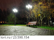 Autumn rainy night with lonely bench under yellowed autumn trees-night autumn landscape. Стоковое фото, фотограф Зезелина Марина / Фотобанк Лори
