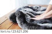 woman folding faux fur jacket on table at home. Стоковое видео, видеограф Syda Productions / Фотобанк Лори