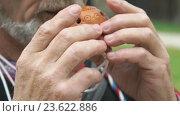 Купить «70-ти летний мужчина играет на глиняном свистке», видеоролик № 23622886, снято 24 сентября 2016 г. (c) worker / Фотобанк Лори