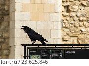 Детали Лондонского замка Тауэр (2016 год). Редакционное фото, фотограф Денис Овсянников / Фотобанк Лори