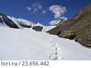 Следы на снежном склоне гор. Алтай (2011 год). Редакционное фото, фотограф Татьяна Цеброва / Фотобанк Лори