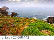 Купить «ocean coast», фото № 23668142, снято 12 ноября 2019 г. (c) Яков Филимонов / Фотобанк Лори