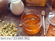 Купить «Жасмин, мед и молоко», фото № 23669962, снято 3 марта 2016 г. (c) Вероника Галкина / Фотобанк Лори