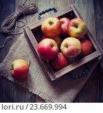 Купить «Красные яблоки в деревянном ящике», фото № 23669994, снято 11 апреля 2016 г. (c) Вероника Галкина / Фотобанк Лори