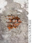 Купить «Кирпичная стена с облезшей штукатуркой. Фон», фото № 23670222, снято 14 августа 2016 г. (c) Наталья Осипова / Фотобанк Лори
