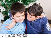 Купить «Два мальчика друга ведут беседу под елкой», фото № 23707626, снято 19 января 2016 г. (c) Emelinna / Фотобанк Лори
