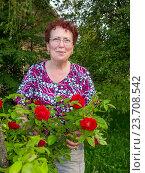 Купить «Пожилая женщина стоит рядом с выращенными ей розами», эксклюзивное фото № 23708542, снято 18 июня 2016 г. (c) Вячеслав Палес / Фотобанк Лори