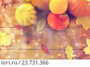 Купить «close up of pumpkins on wooden table at home», фото № 23731366, снято 19 октября 2015 г. (c) Syda Productions / Фотобанк Лори