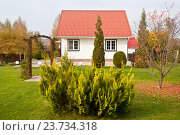 Купить «Дом на осеннем дачном участке», фото № 23734318, снято 3 октября 2016 г. (c) Victoria Demidova / Фотобанк Лори