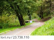 Велосипедная дорожка в парке. Стоковое фото, фотограф Юрий Губин / Фотобанк Лори