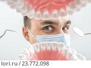 Купить «Стоматолог смотрит через макет челюсти», фото № 23772098, снято 18 сентября 2016 г. (c) Andriy Bezuglov / Фотобанк Лори