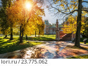 Купить «Солнце в парке Царицыно», фото № 23775062, снято 1 октября 2016 г. (c) Baturina Yuliya / Фотобанк Лори
