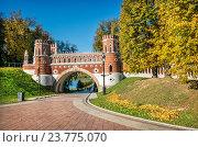 Купить «Фигурный мост в Царицыно, Москва», фото № 23775070, снято 1 октября 2016 г. (c) Baturina Yuliya / Фотобанк Лори
