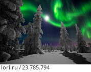 Купить «Зимний пейзаж с деревьями, северным сиянием и луной», фото № 23785794, снято 7 января 2015 г. (c) Оксана Владимировна Грачева / Фотобанк Лори