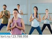Купить «Group of people performing yoga», фото № 23788958, снято 28 апреля 2016 г. (c) Wavebreak Media / Фотобанк Лори