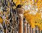 Ограда Михайловского сада в обрамлении желтых осенних деревьев - вид крупным планом, Санкт-Петербург, Россия, фото № 23803366, снято 3 октября 2016 г. (c) Зезелина Марина / Фотобанк Лори