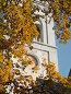 Калининградский областной театр кукол, часы на башне среди осенних ветвей( кирха памяти королевы Луизы-наследие Кёнигсберга) Фокус на листве, эксклюзивное фото № 23820934, снято 16 октября 2016 г. (c) Svet / Фотобанк Лори