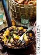 Купить «Жареный картофель с грибами в сковороде», фото № 23821214, снято 16 октября 2016 г. (c) Зоряна Ивченко / Фотобанк Лори