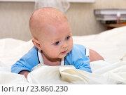 Купить «Малыш лежит на животе», фото № 23860230, снято 24 февраля 2015 г. (c) Андрей Некрасов / Фотобанк Лори