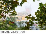 Вид на Дворец Пена (Palacio Nacional da Pena) окутанный сильным туманом . Синтра. Португалия (2016 год). Стоковое фото, фотограф E. O. / Фотобанк Лори