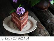Кусок шоколадного торта, украшенный сиренью. Стоковое фото, фотограф Оксана Голева / Фотобанк Лори