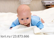 Купить «Малыш лежит на животе», фото № 23873666, снято 24 февраля 2015 г. (c) Андрей Некрасов / Фотобанк Лори
