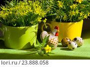 Пасхальное украшение интерьера с керамической курочкой, цветами гусиного лука и яйцами. Стоковое фото, фотограф Елена Лобовикова / Фотобанк Лори