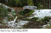 Купить «Small bridge over river Zyryanka in Novosibirsk Akademgorodok botanical garden», видеоролик № 23902854, снято 21 октября 2016 г. (c) Serg Zastavkin / Фотобанк Лори