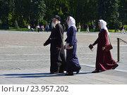 Купить «Православный батюшка в Московском Кремле», эксклюзивное фото № 23957202, снято 28 августа 2016 г. (c) lana1501 / Фотобанк Лори