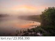 Купить «Туманный рассвет на берегу реки Клязьмы», фото № 23958390, снято 11 июля 2016 г. (c) Юрий Трофимов / Фотобанк Лори