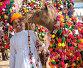 Традиционные украшения верблюда  в Пушкаре, фото № 23970766, снято 22 ноября 2012 г. (c) photoff / Фотобанк Лори